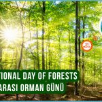 21_March_Day of forests
